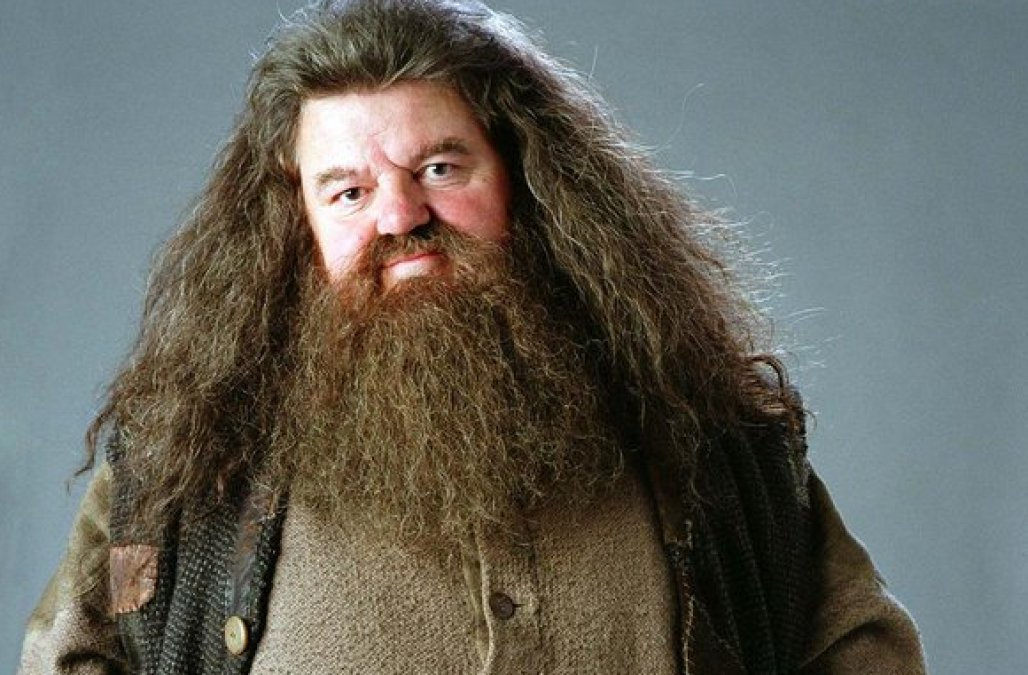 2.  Hagrid - Harry Potter