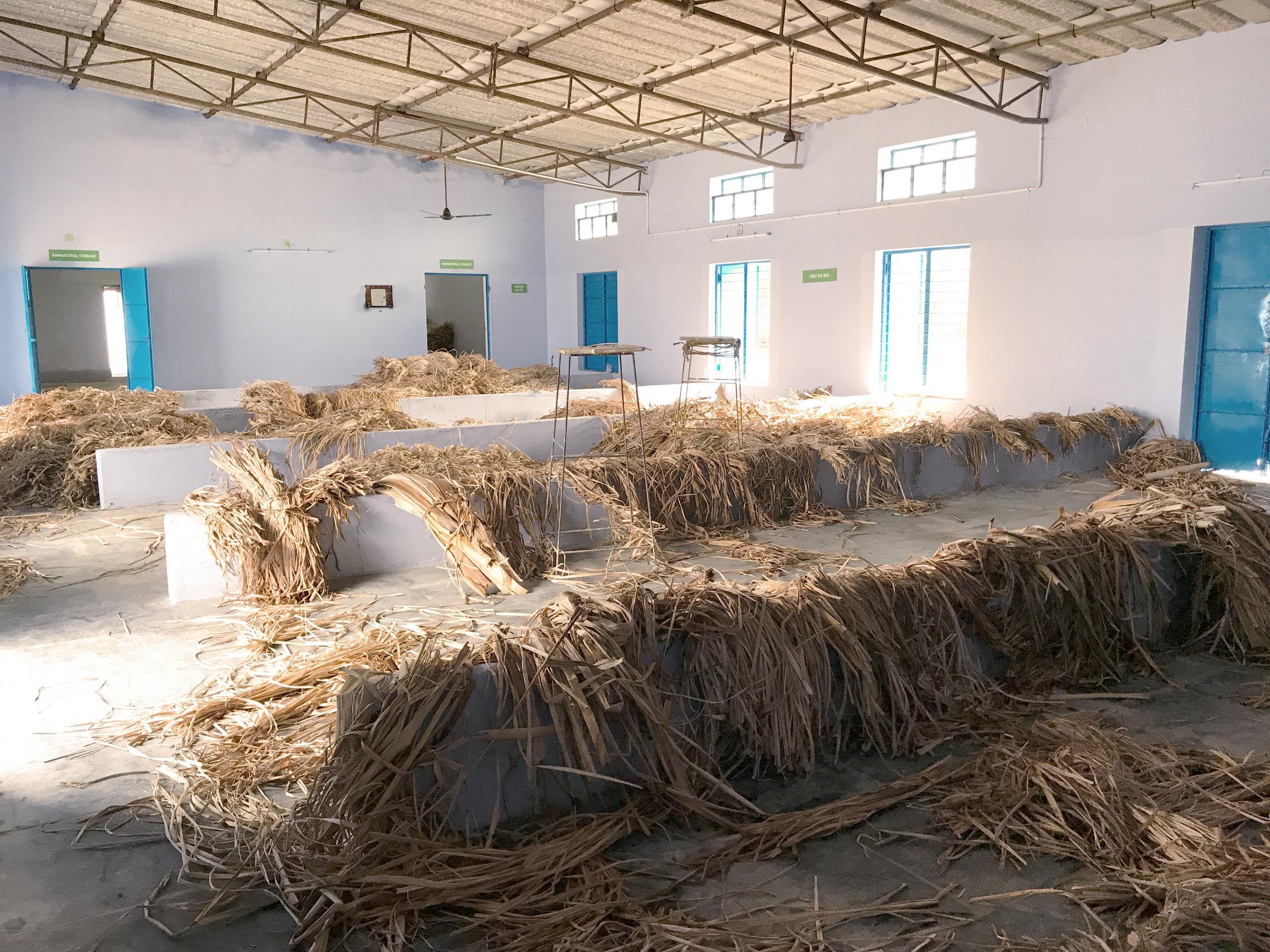 Die Bananenfasern werden in grossen Hallen getrocknet.