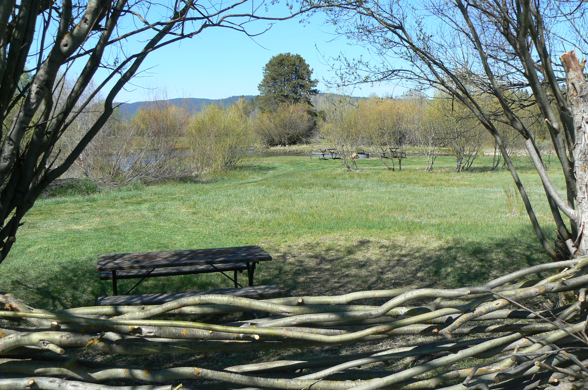River Tent Site 3