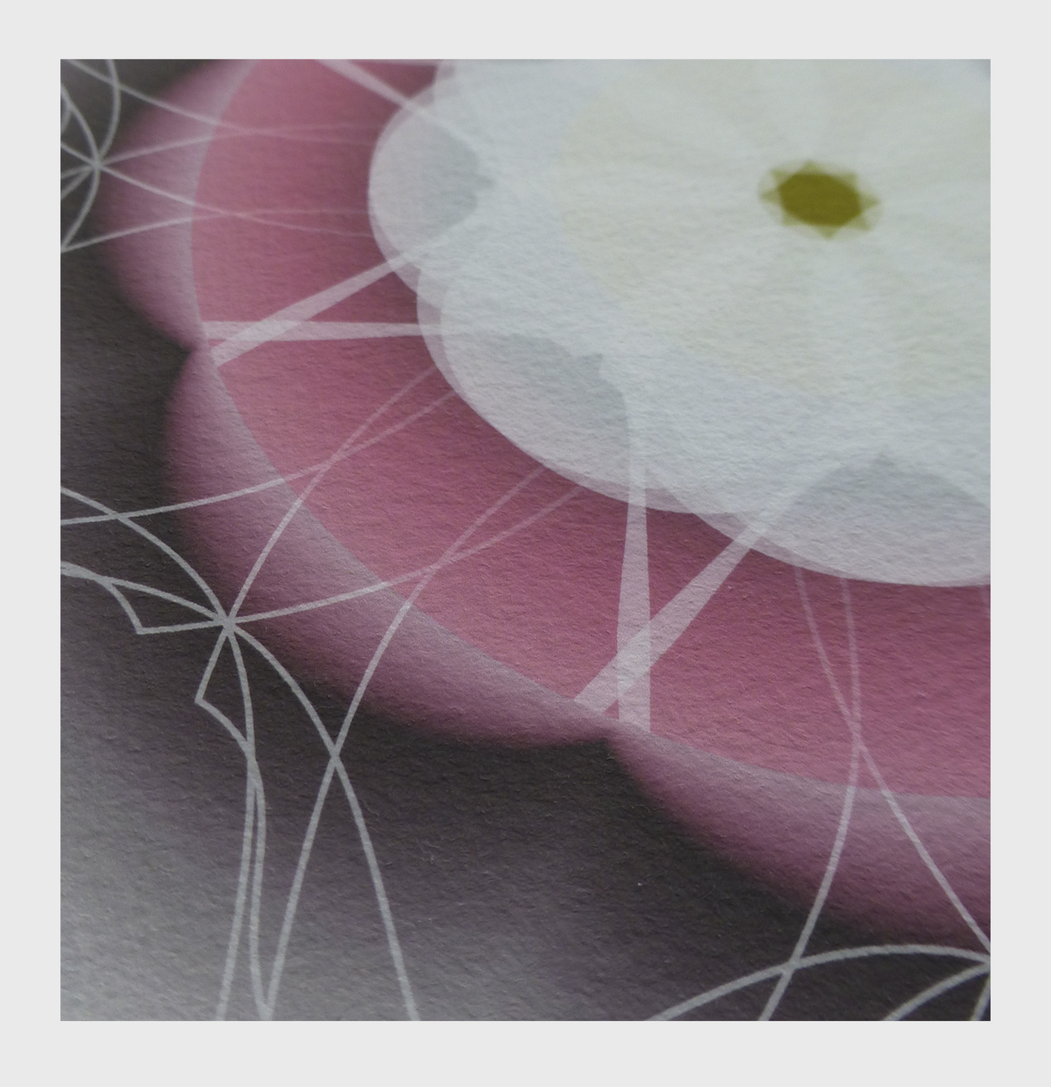 ©clairebrooker_kimono_flower_rose_detail.jpg