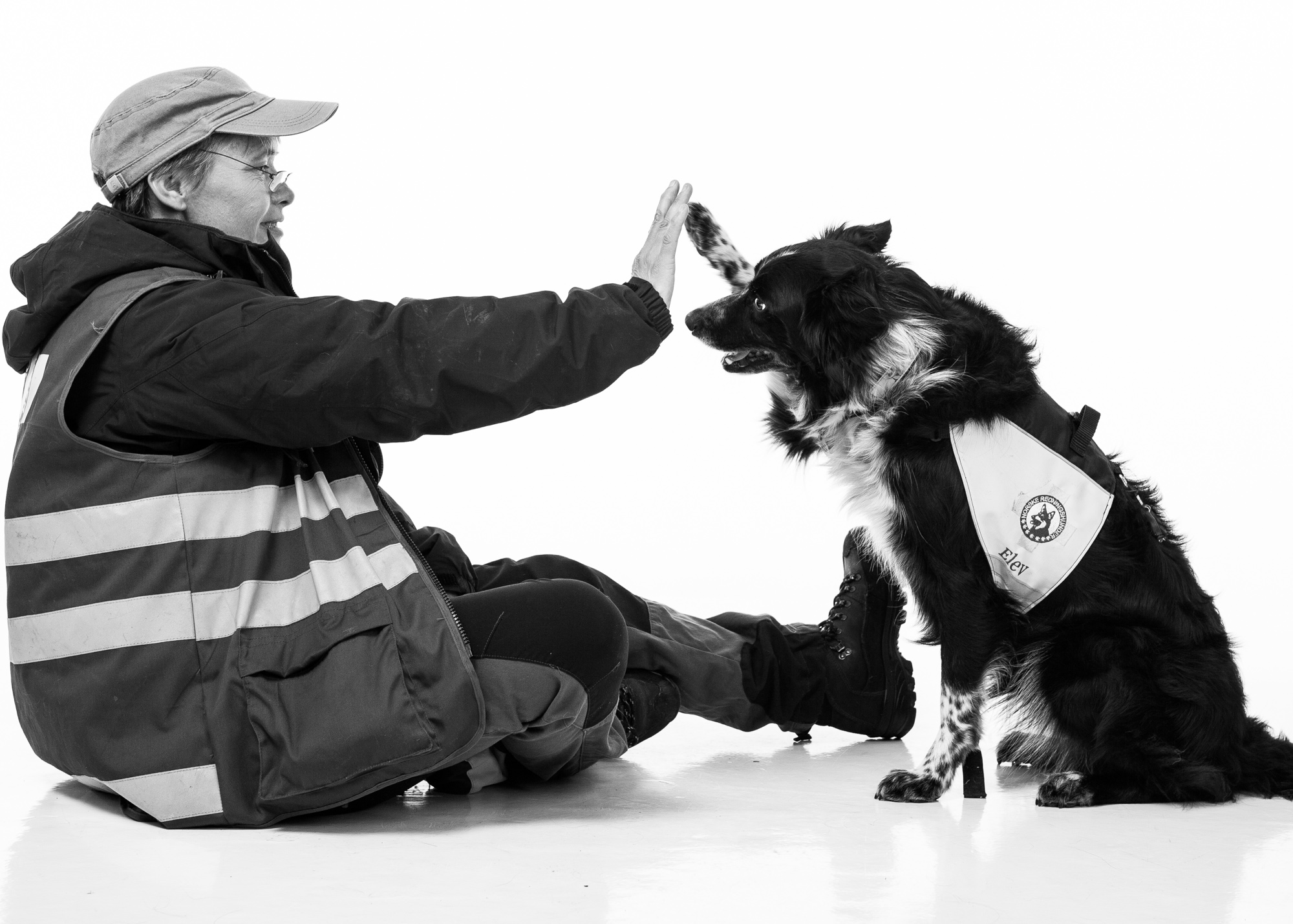 "In recognition of the important work all K-9 SAR teams perform around the world.    - Trude and Essa, training with Norwegian Search and Rescue Dogs (  http://www.norske-redningshunder.no/  )          Normal   0           false   false   false     EN-US   X-NONE   X-NONE                                                                                                                                                                                                                                                                                                                                                                           /* Style Definitions */  table.MsoNormalTable 	{mso-style-name:""Table Normal""; 	mso-tstyle-rowband-size:0; 	mso-tstyle-colband-size:0; 	mso-style-noshow:yes; 	mso-style-priority:99; 	mso-style-parent:""""; 	mso-padding-alt:0in 5.4pt 0in 5.4pt; 	mso-para-margin-top:0in; 	mso-para-margin-right:0in; 	mso-para-margin-bottom:10.0pt; 	mso-para-margin-left:0in; 	line-height:115%; 	mso-pagination:widow-orphan; 	font-size:11.0pt; 	font-family:""Times New Roman"",""serif"";}"