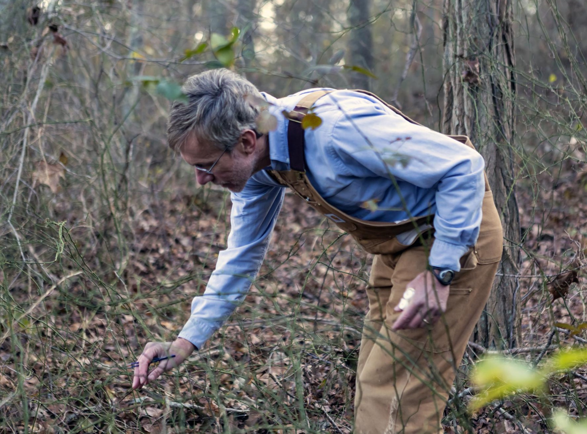 Tom Mather, gathering ticks for testing.  He can spot those buggers on the ends of branches where they wait to latch on.  Remember: CHECK YOURSELF and your dog every day!