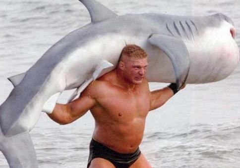 Me! Man! Shark! You die! Photo: thepinkflamingoblog.com
