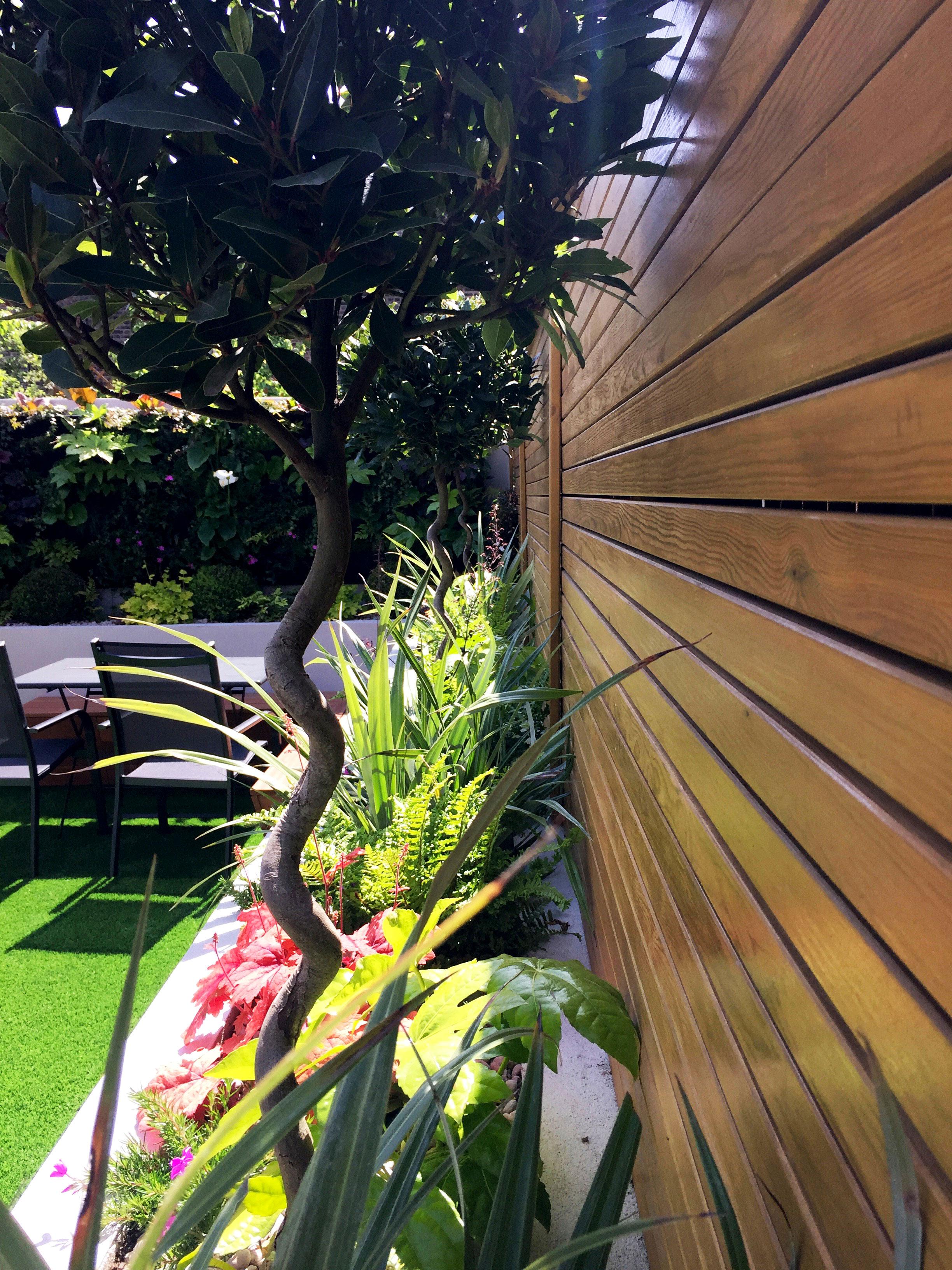 planting-design-2---Gallagher-gardens---Landscaping-Oxford.jpg