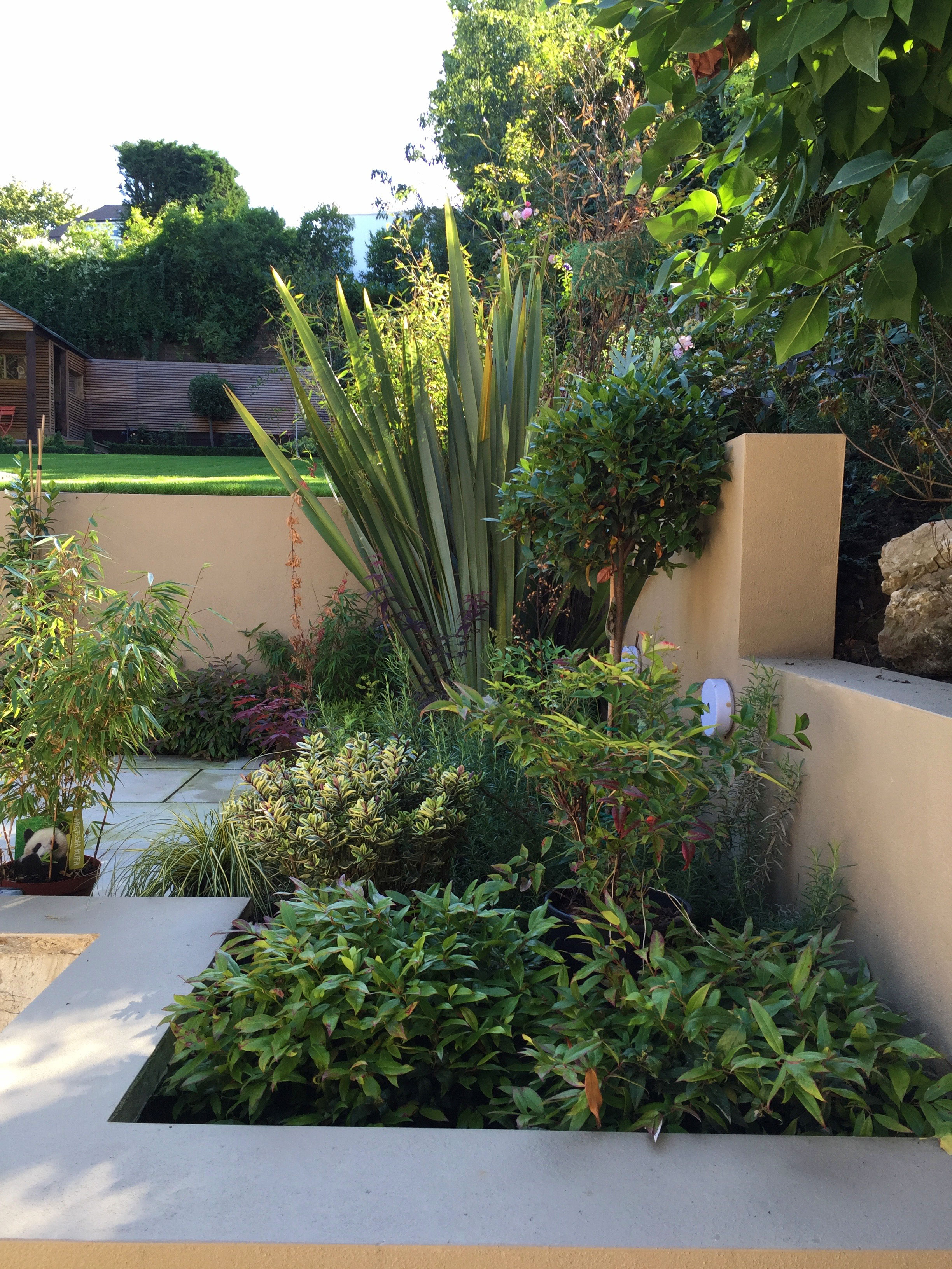 Rendered-beds---planting--Gallagher-gardens---Landscaping-Oxford.jpg