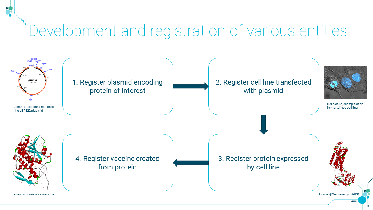 BIOVIA Biological Registration provides a system for recording the progress and relationships among the components needed to develop a bio therapeutic.