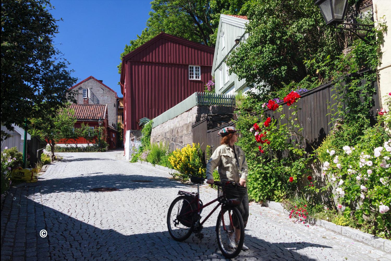 Oslo-damstredet-Telthusbakken-46 - Copy.jpg