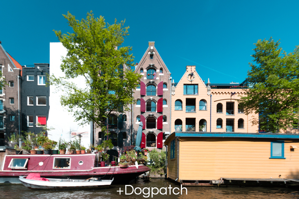 +Dogpatch.jpg