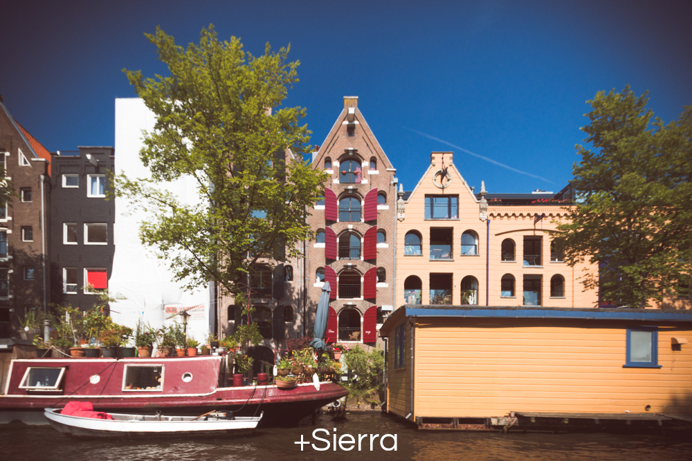 +Sierra.jpg