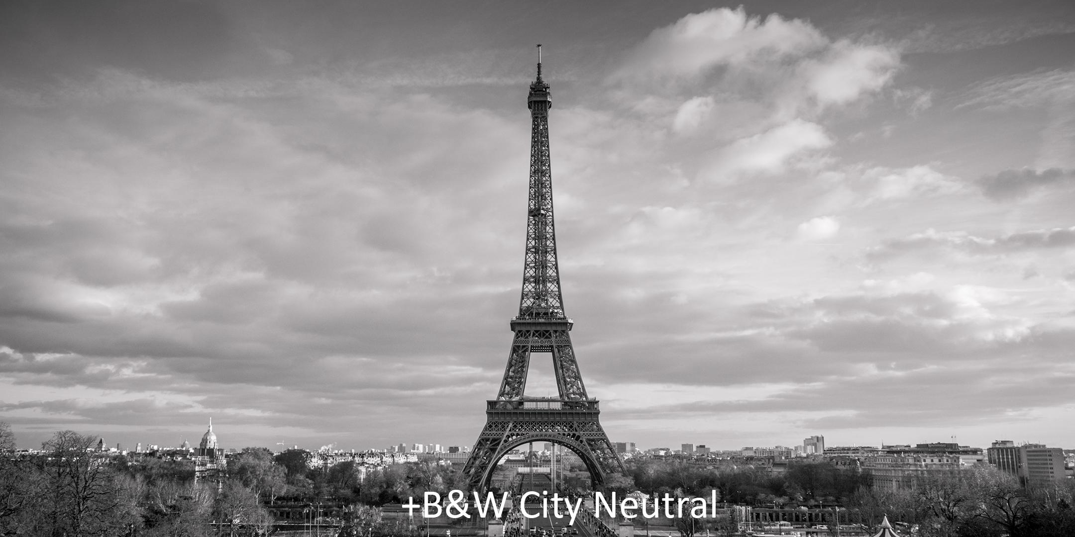 + B&W City Neutral.jpg