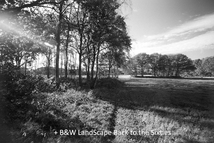 BW LandScape Back to the Sixties.jpg