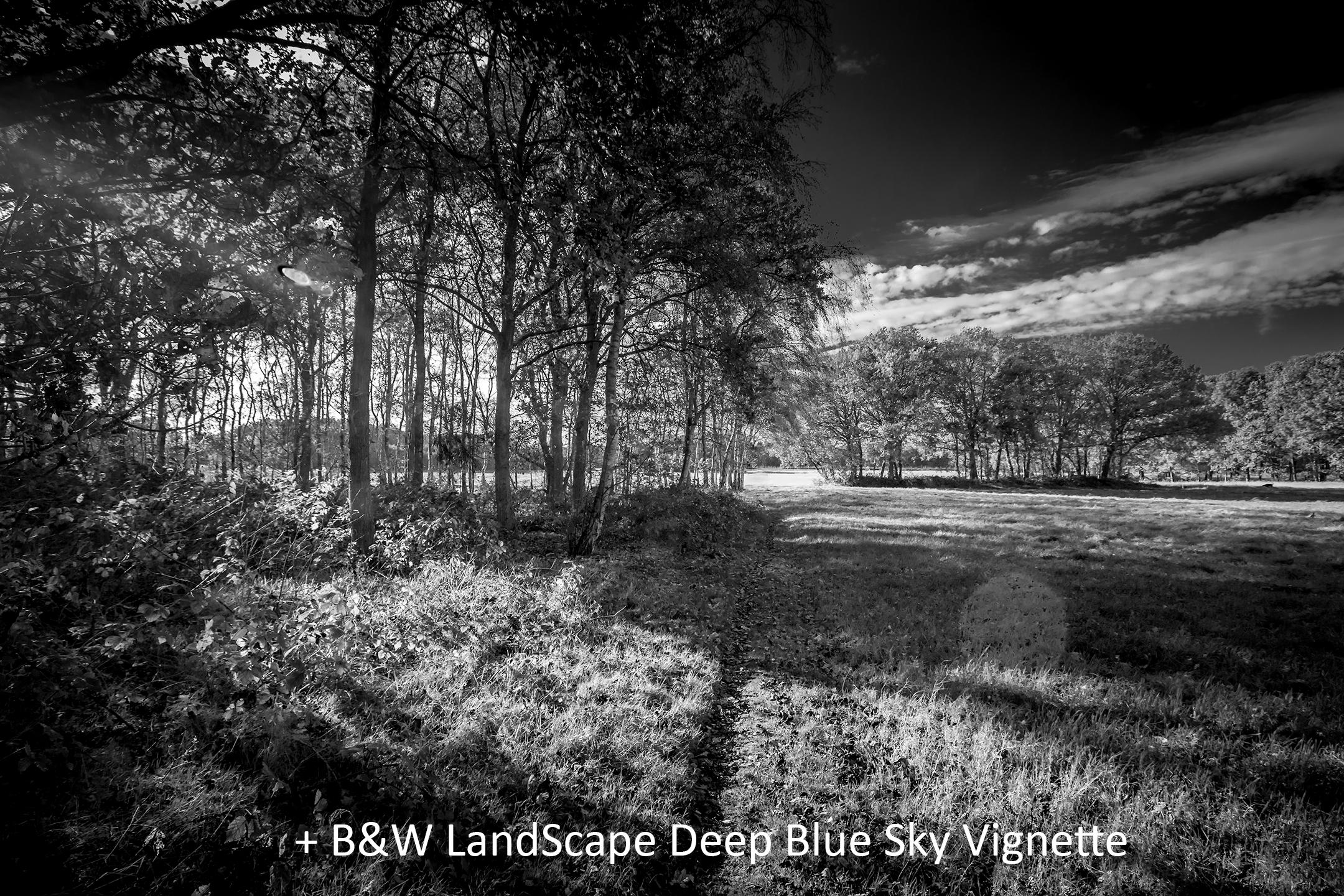 BW LandScape Deep Blue Sky Vignette.jpg
