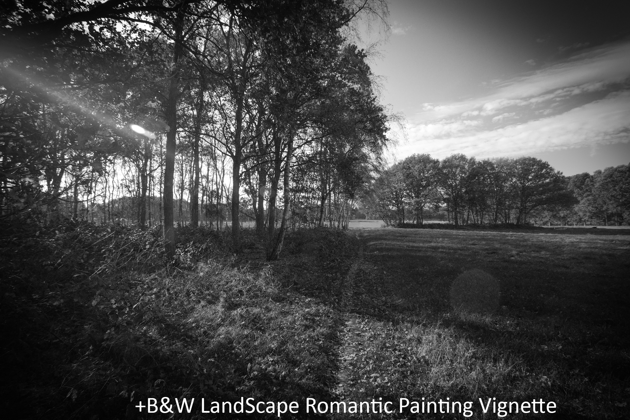 BW LandScape Romantic Painting Vignette.jpg