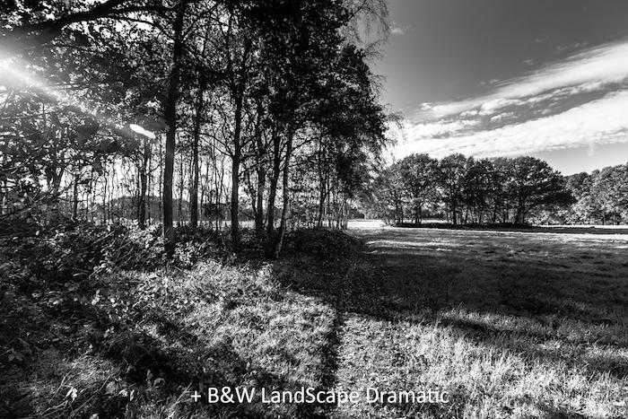 BW LandScape Dramatic.jpg
