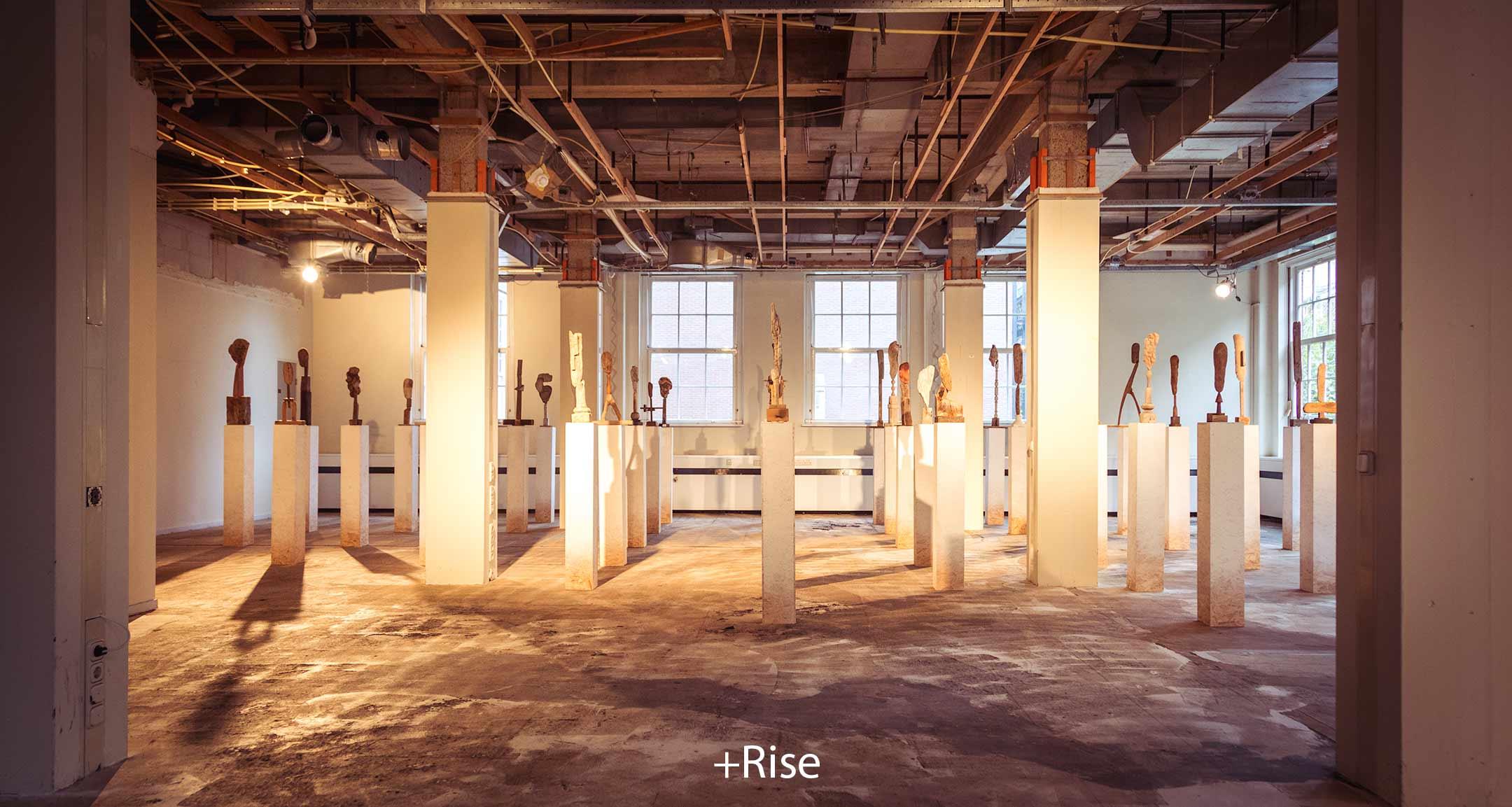 +Rise.jpg