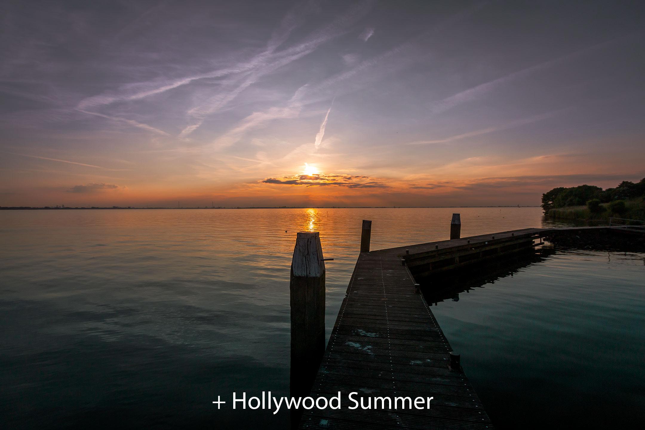 Hollywood Summer 2.jpg