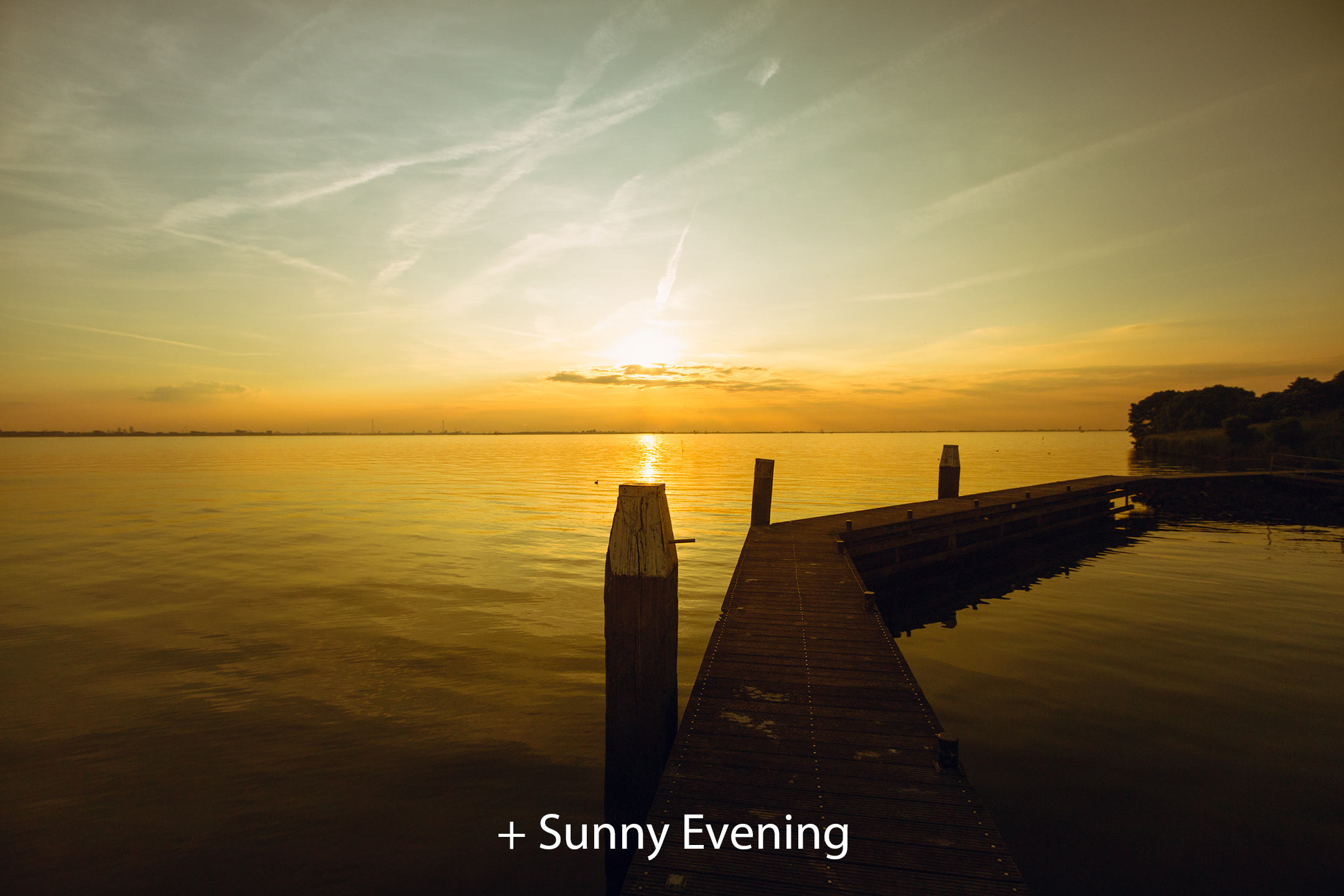 Sunny Evening 2.jpg