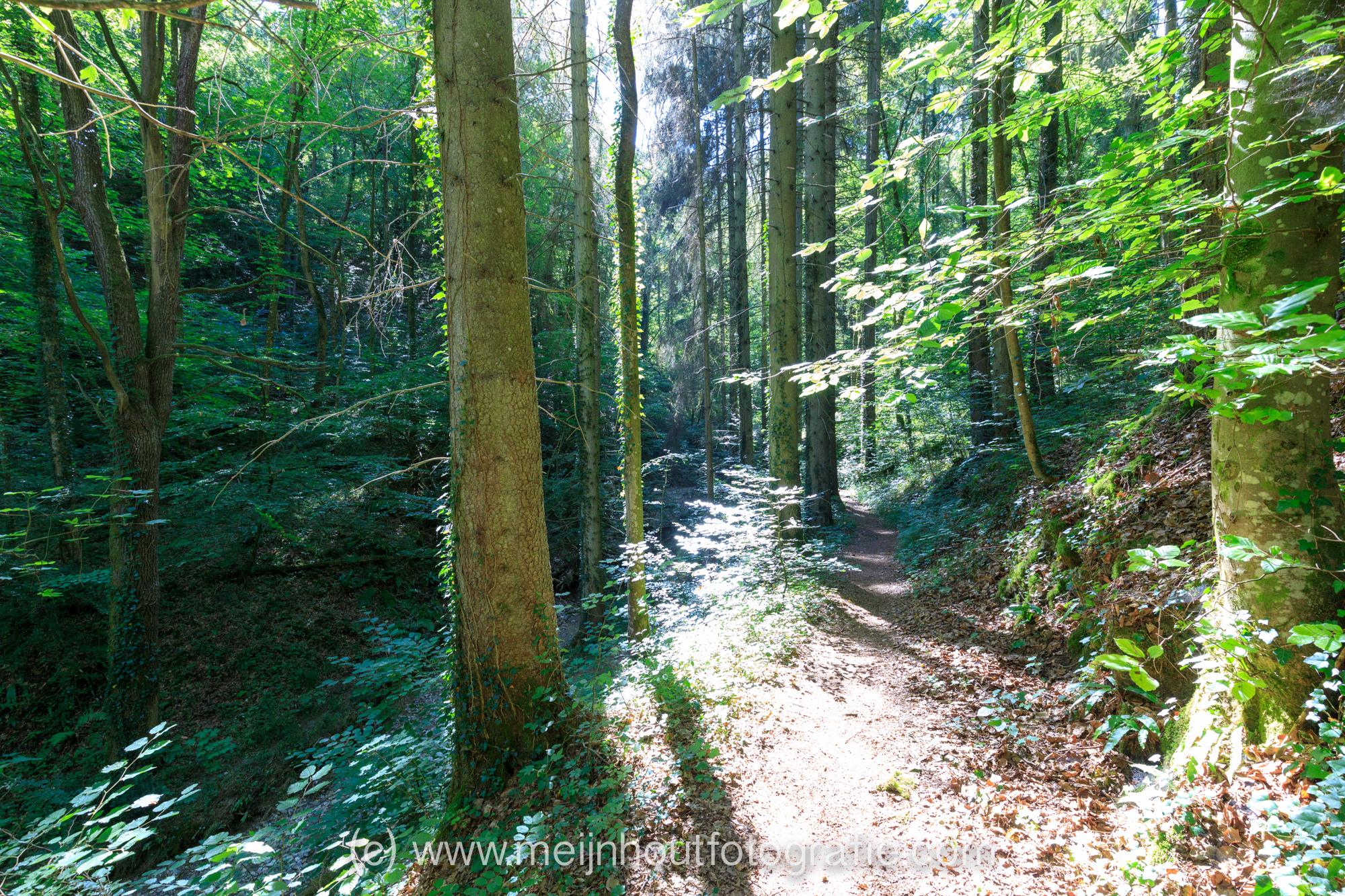 20180730-_MG_9678 Camping Sy Ardennen Belgium.jpg