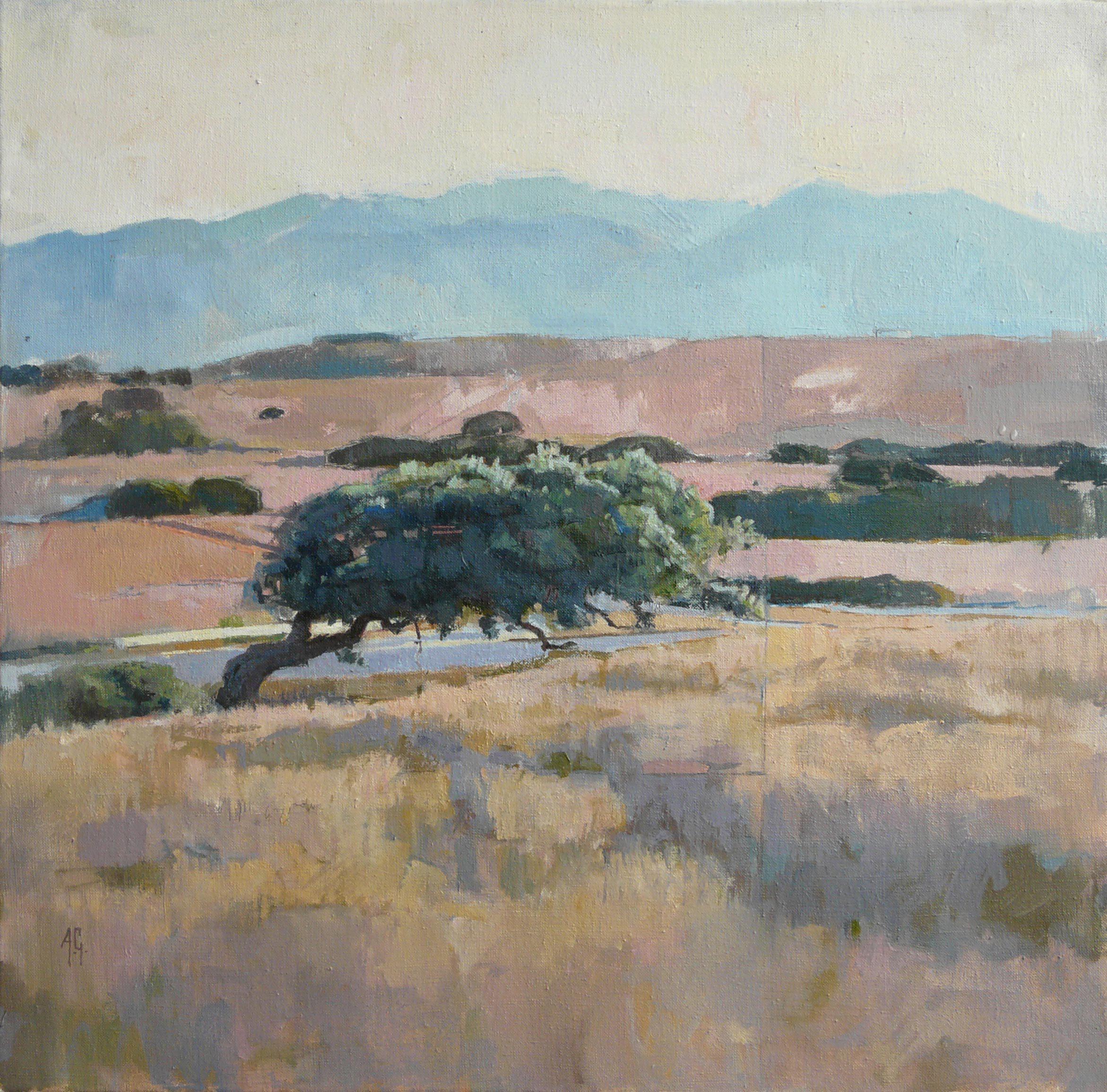 Oak-near-Iglesias.jpg