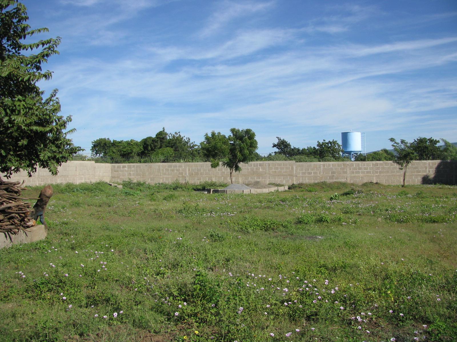 Eden Wall.jpg