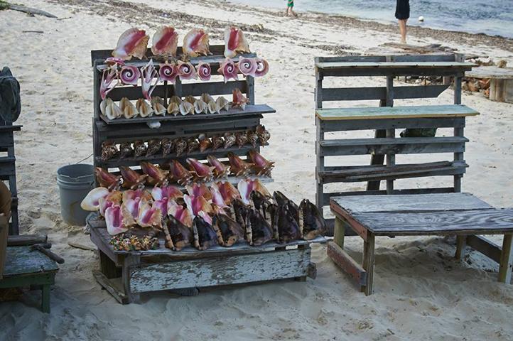 22-01-PLR014-Travel_2014-Turks_Caicos-Travel-26.jpg