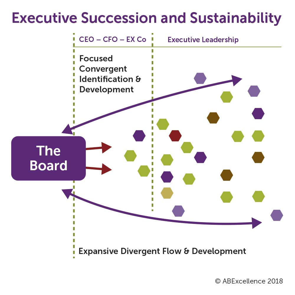 executive-succession-and-sustainability-graphic.jpg