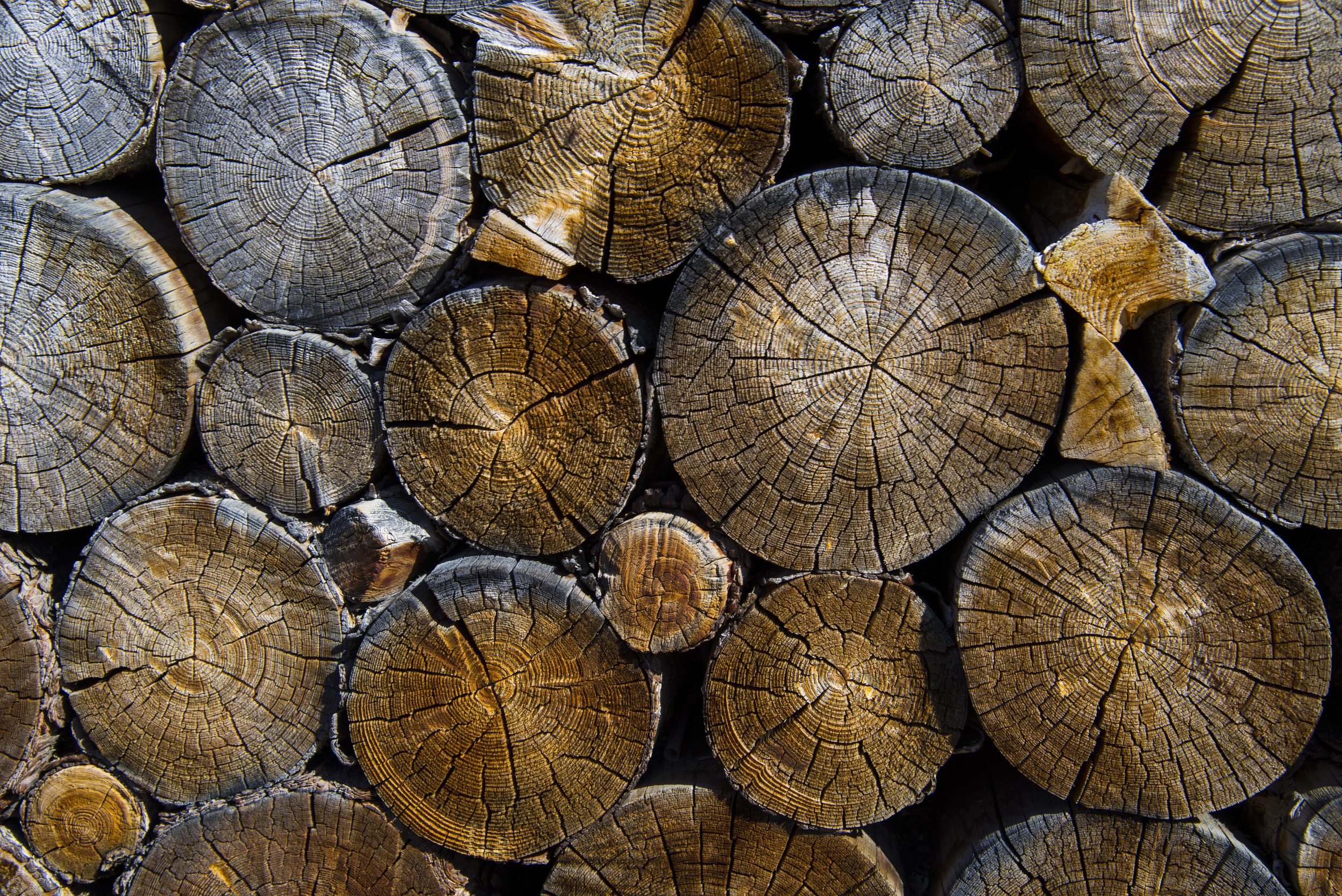 lumber_revivelifestyleblog