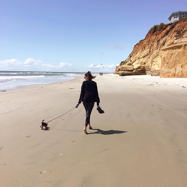 Yesterday we drove from Phoenix to San Diego for family vacation. @rupeetheromanian and I are so happy and soaking up the beach. There's truly nothing better than having your toes in the sand and hearing the waves crash into the shore.  #beachlifevibes #beachbabes #yorkiesofig #toyyorkie #toesinthesand #familyvacation2019 #roadtripusa #calicoast #restandrelax #recovering