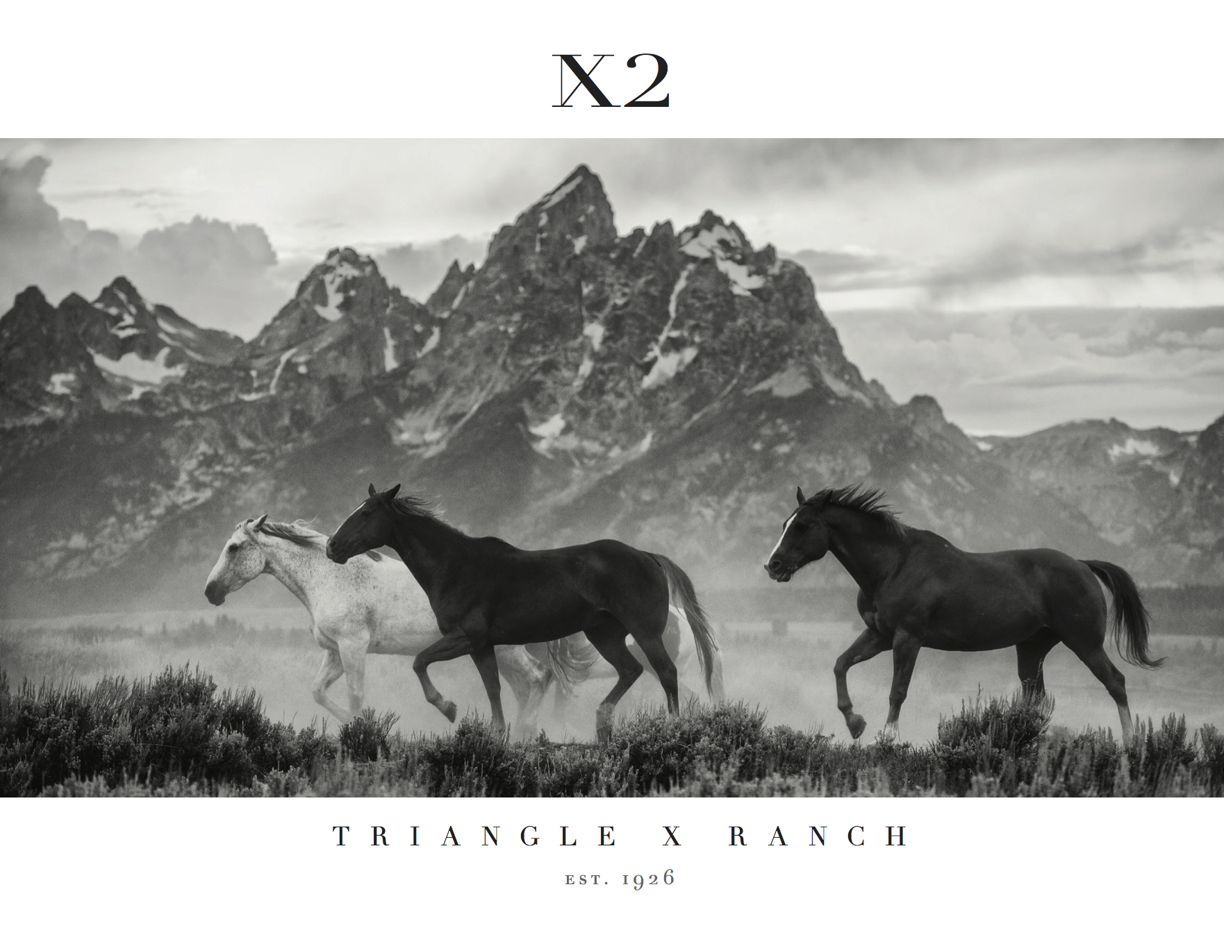 Triangle X 90th Anniversary Coffee Table Book