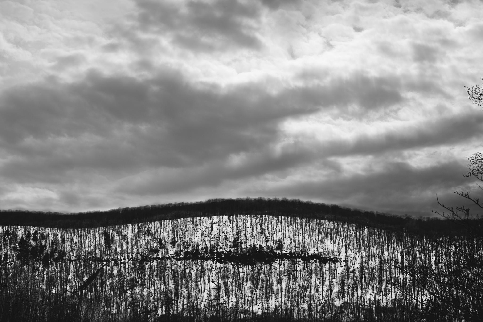 blackandwhite-mountain-trees-cloud-sky