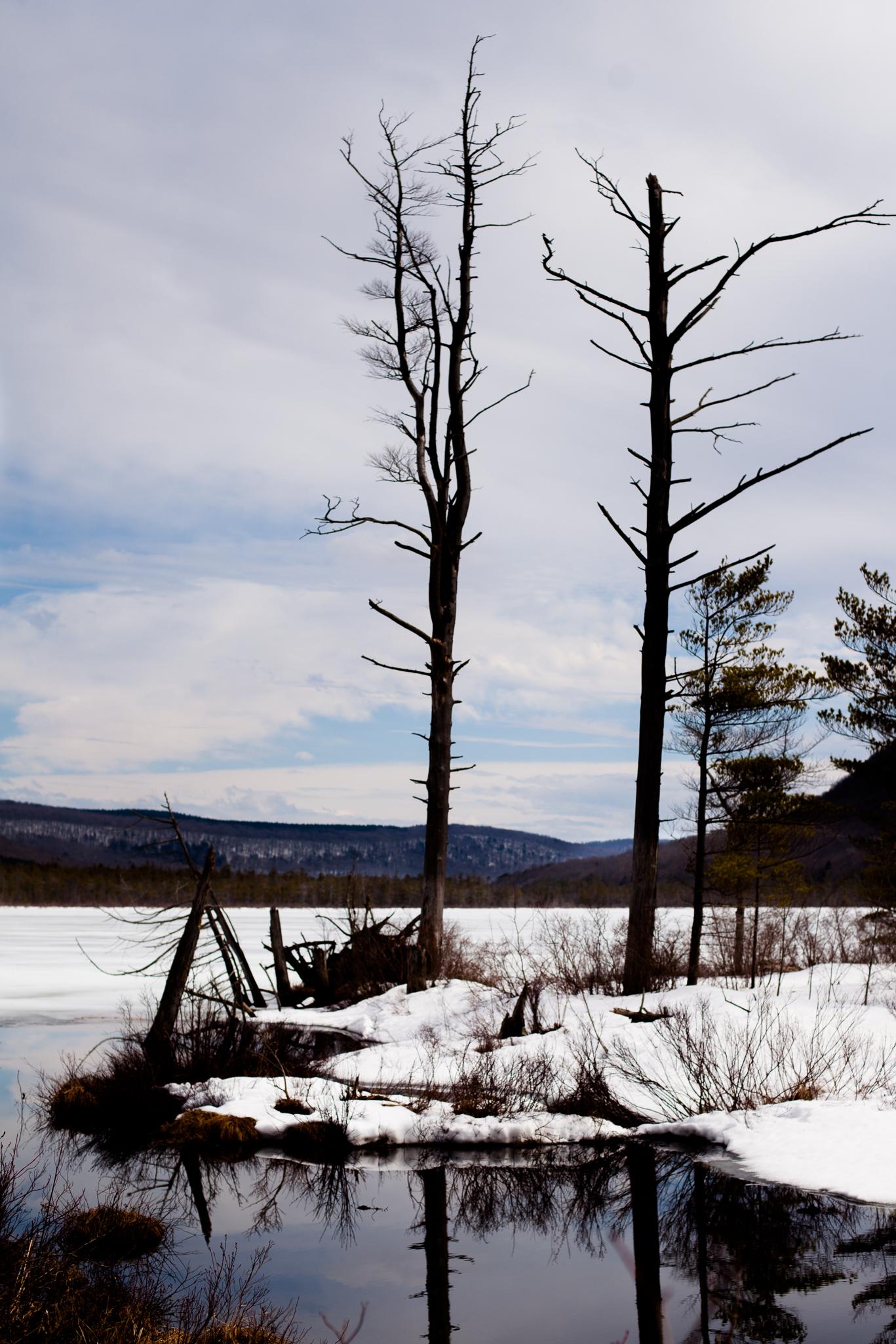 winter-lake-reflection-tully-newyork