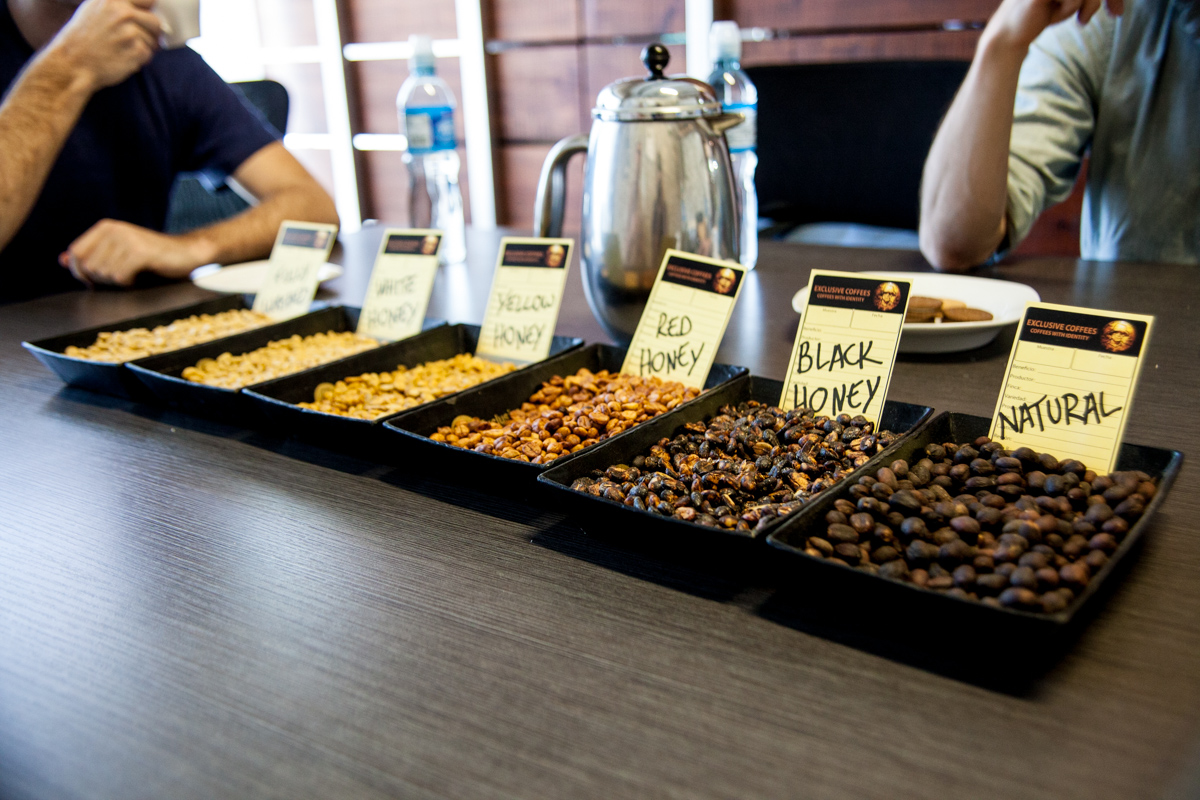"Examples of the varying ""honey"" style coffees at Exclusive Coffees, Costa Rica. Simply correlates to how much of the pulp is left on the cherry during drying - the more pulp the more fruity tasting the coffee."