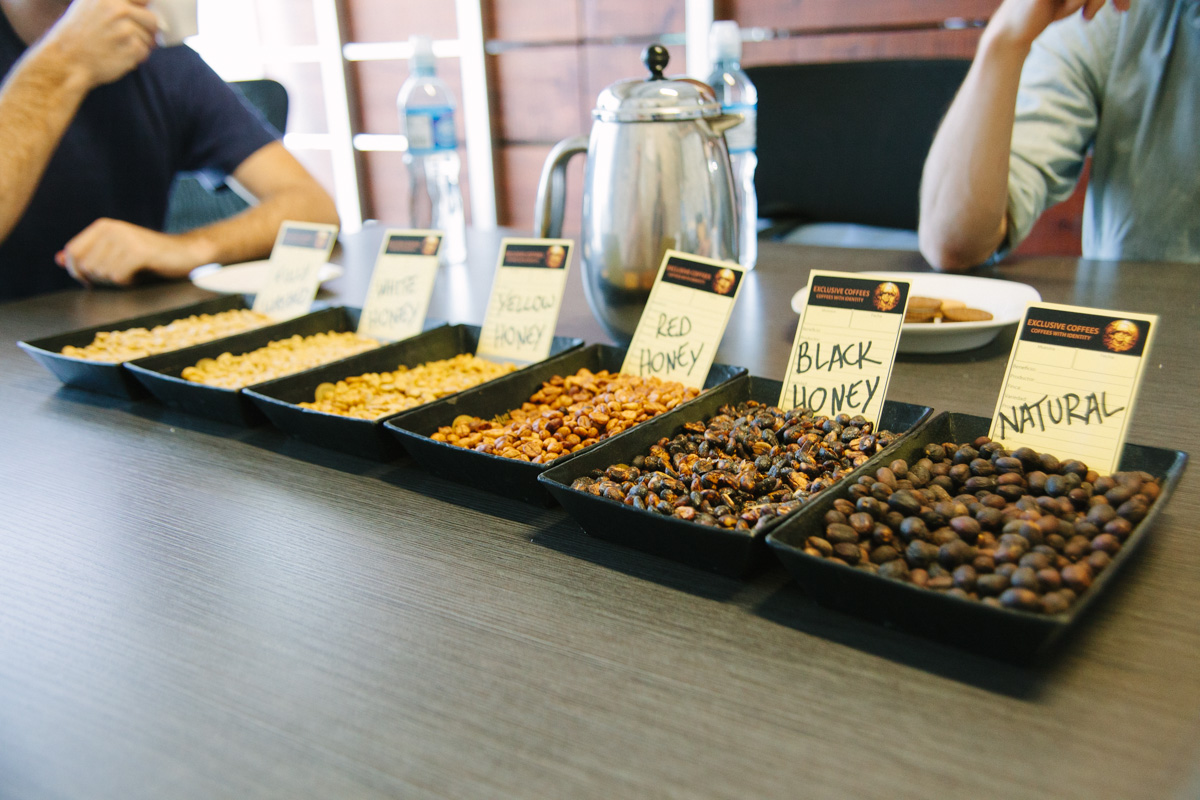 """Unique to Costa Rica, varying types of semi-washed coffees are typified as full natural through """"white honey."""""""