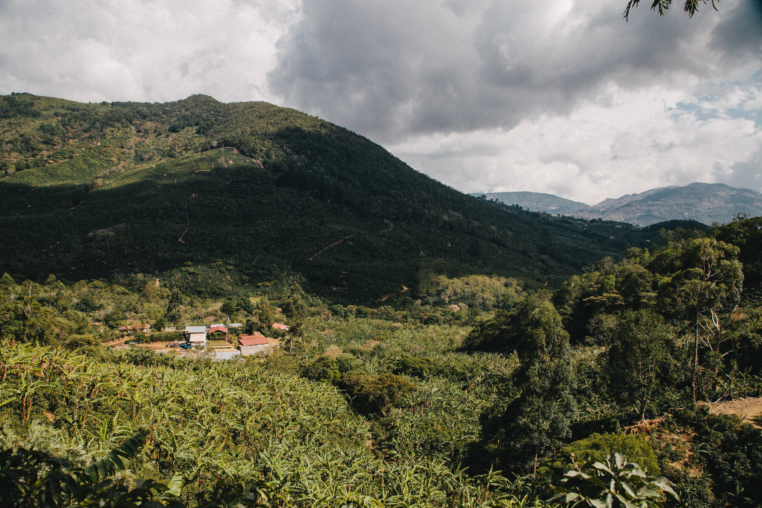 Don Mayo mill in Costa Rica where coffee pulp is smartly reused to fuel coffee driers.Picture by Austin Lord.