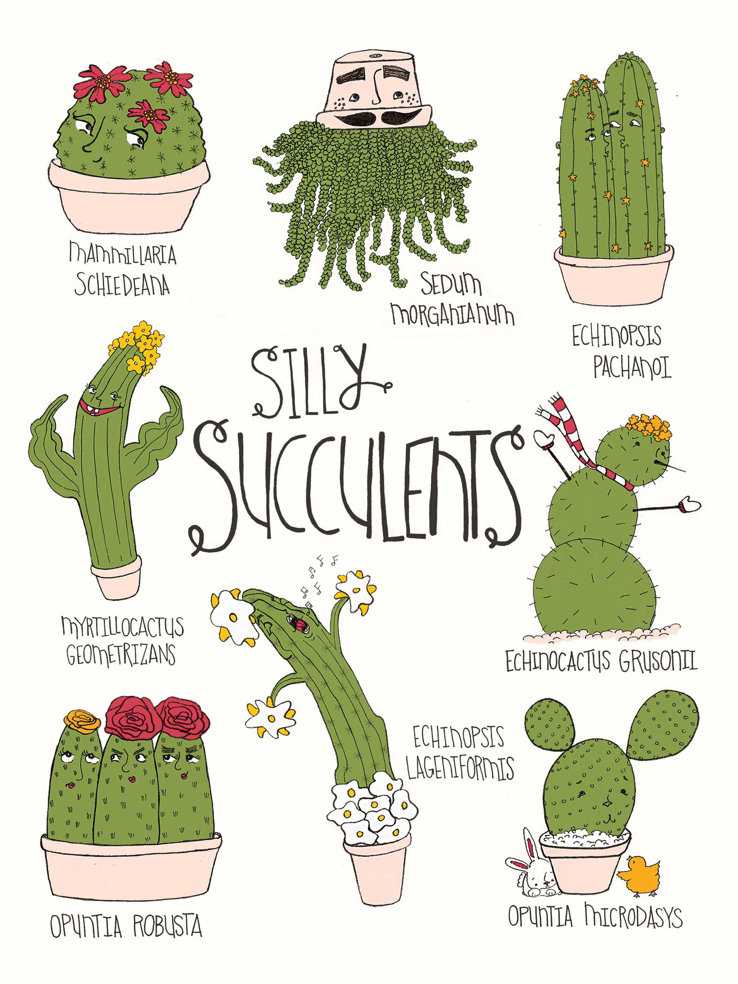 Silly Succulents 9x12.jpg