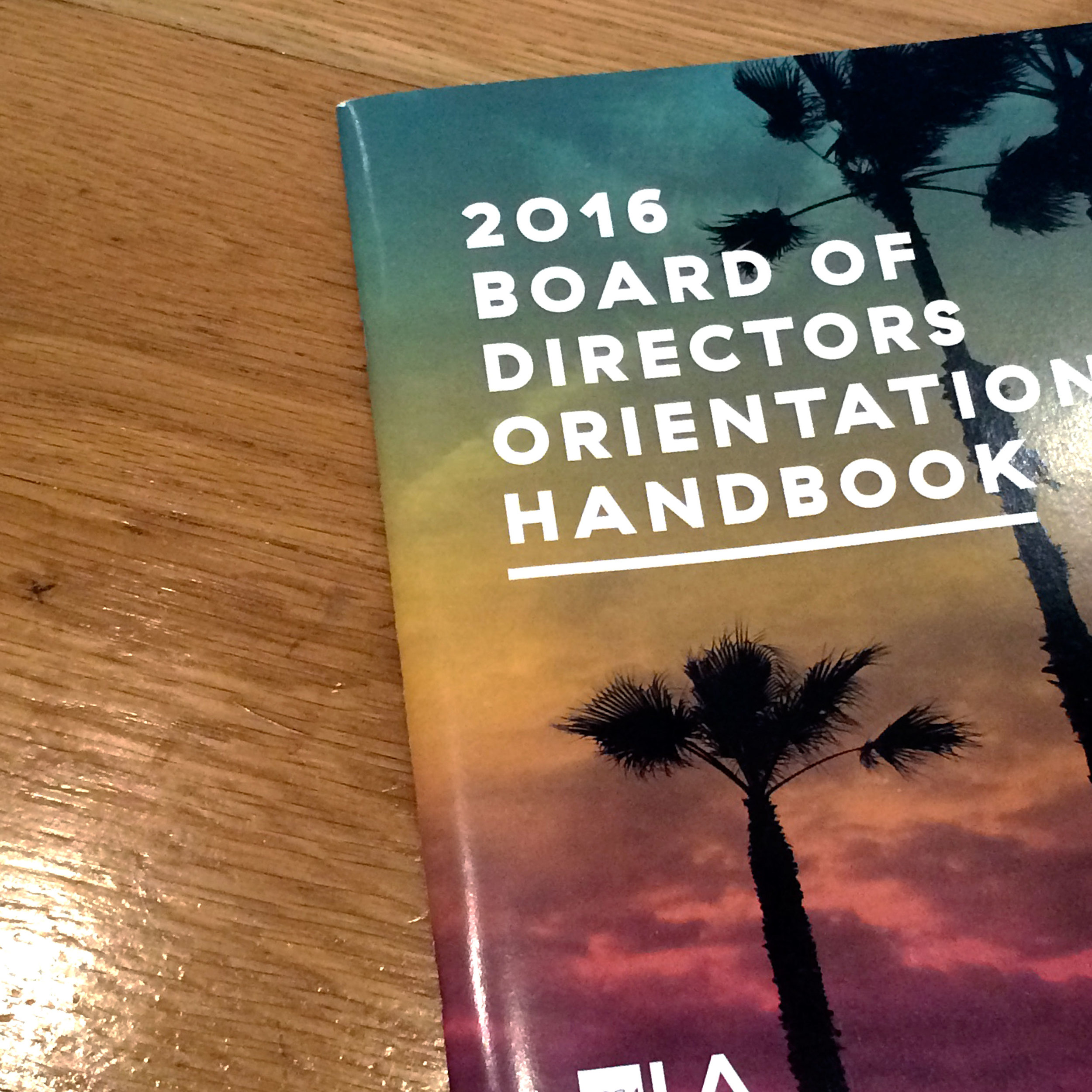 2016 Orientation Handbook. Designed by me for the LA chapter, converted to a national template for the National Leadership Retreat in Raleigh, NC.