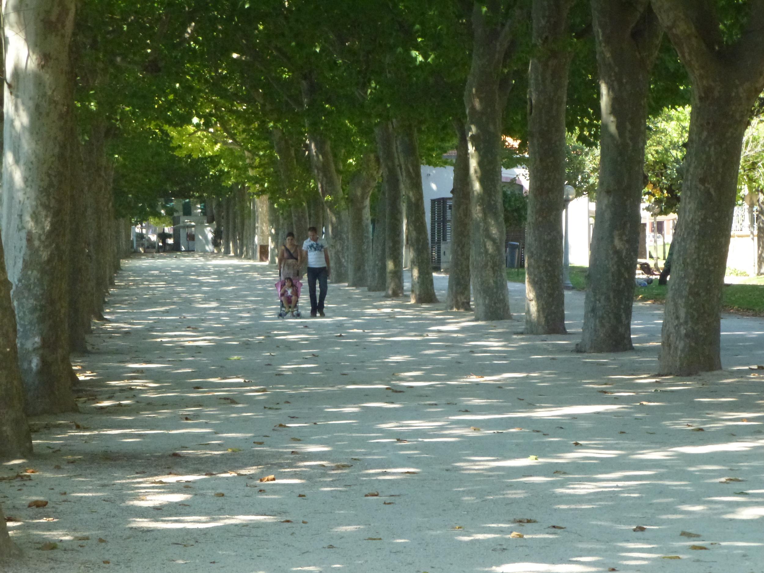 "Riverside walk in Coimbra, Portugal                0    0    1    5    31    WANdisco    1    1    35    14.0                          Normal    0                false    false    false       EN-US    JA    X-NONE                                                                                                                                                                                                                                                                                                                                                                                                                                                                                                                                                  /* Style Definitions */ table.MsoNormalTable {mso-style-name:""Table Normal""; mso-tstyle-rowband-size:0; mso-tstyle-colband-size:0; mso-style-noshow:yes; mso-style-priority:99; mso-style-parent:""""; mso-padding-alt:0cm 5.4pt 0cm 5.4pt; mso-para-margin:0cm; mso-para-margin-bottom:.0001pt; mso-pagination:widow-orphan; font-size:12.0pt; font-family:Cambria; mso-ascii-font-family:Cambria; mso-ascii-theme-font:minor-latin; mso-hansi-font-family:Cambria; mso-hansi-theme-font:minor-latin; mso-ansi-language:EN-US;}"