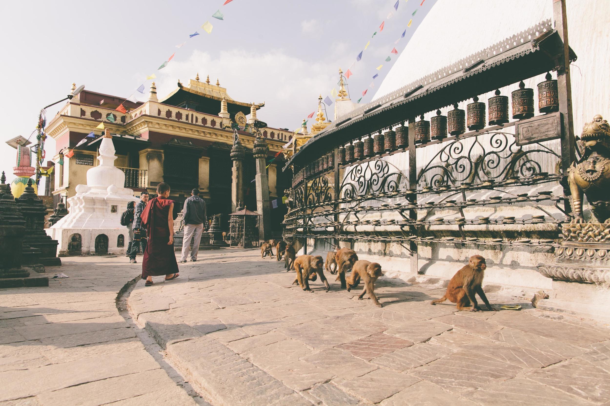 Nepal_110513-14.jpg