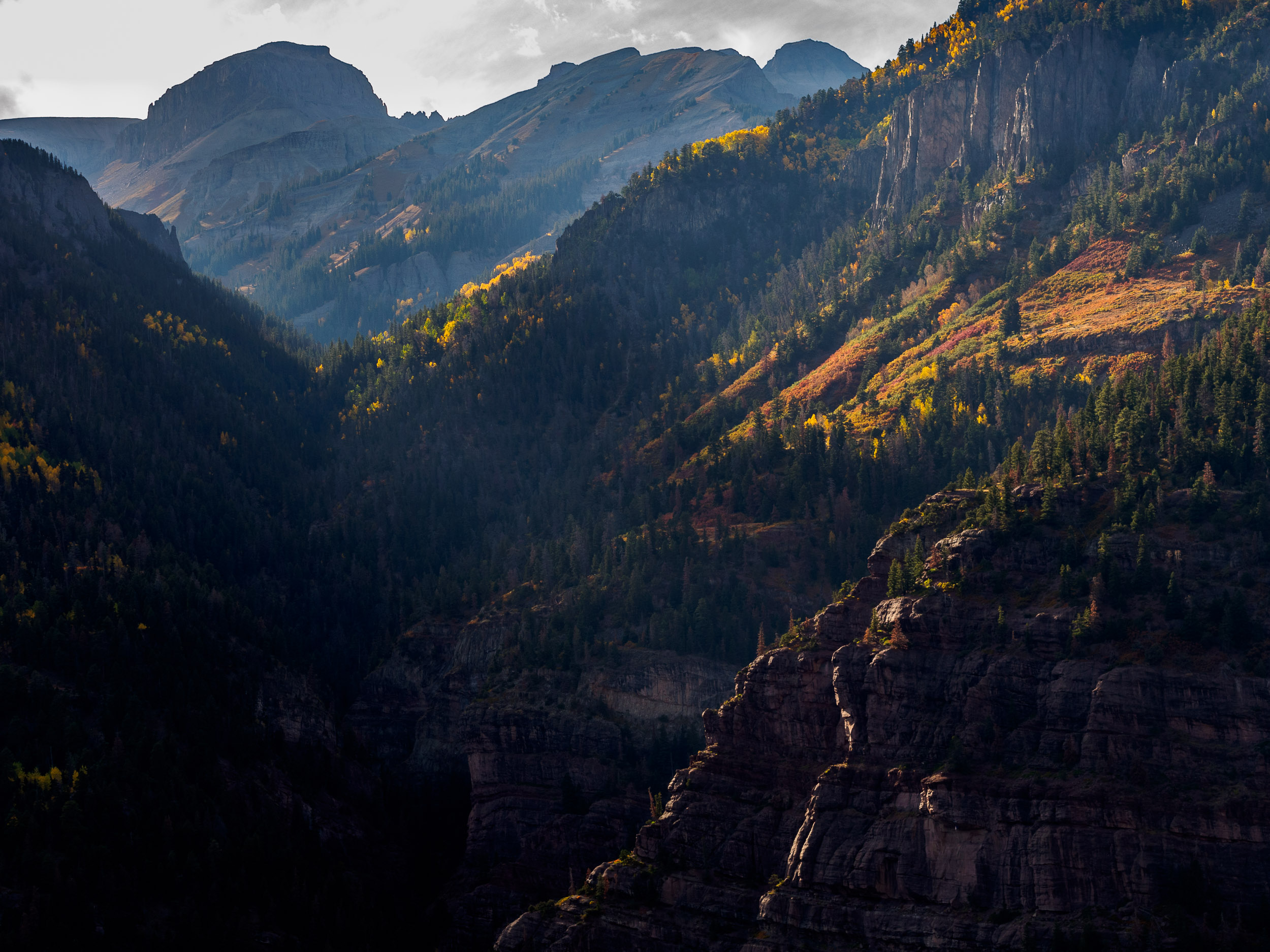Ouray View