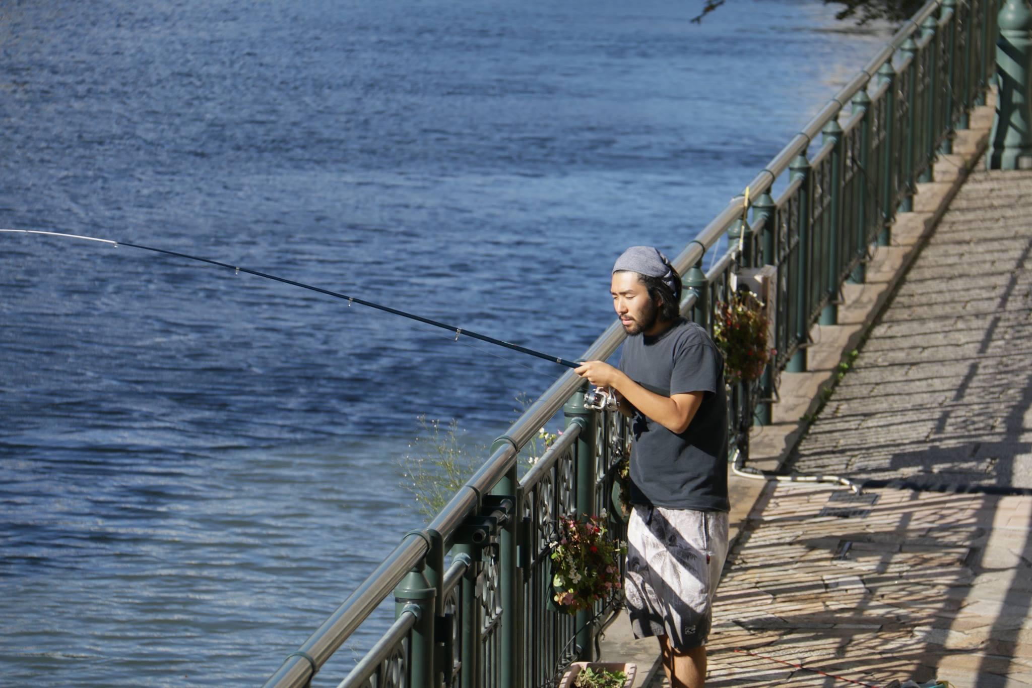 堀川で釣り