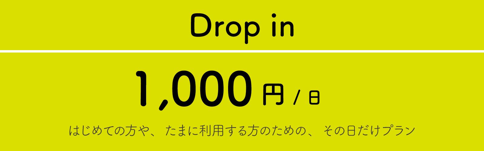 01_Dropin.png