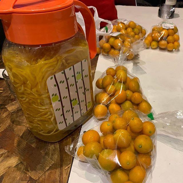 緊急同時多発的に「 #キンカンシゴト 」はじまりました。漬けてもよし食べてもよし遊んでもよしなステキな夜になりそうですね。 - - #ウメシゴト #コメシゴト #クリシゴト #タケシゴト #主婦の会 #シェアベース主婦の会 #シュフシゴト #梅干し #おはぎ #栗ごはん #たけのこご飯 #企画募集 #キンカンジャム