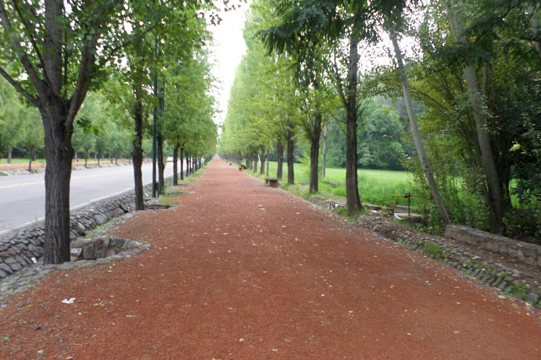 The park close to our hostel in Mendoza