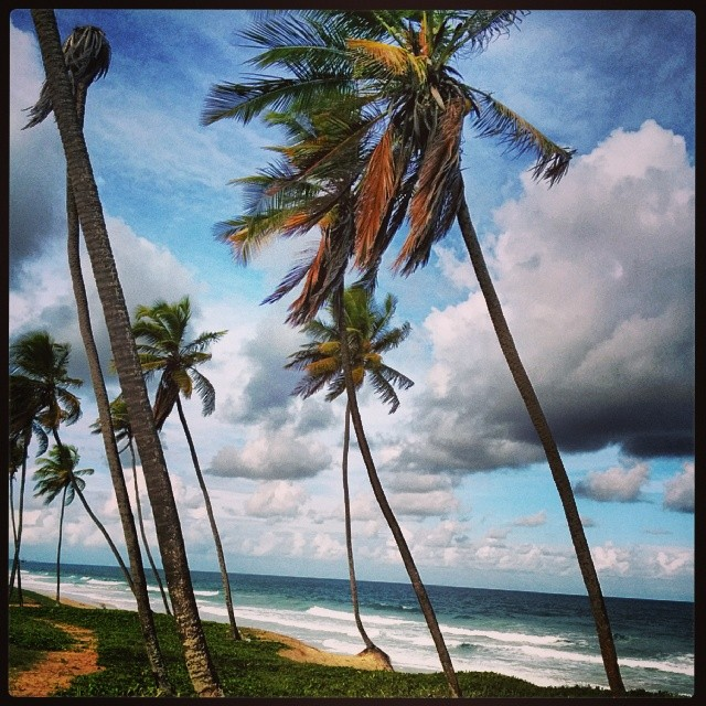 Arembepe beach.jpg