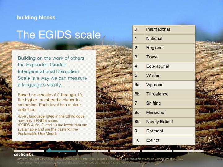 The Guide.008.jpg