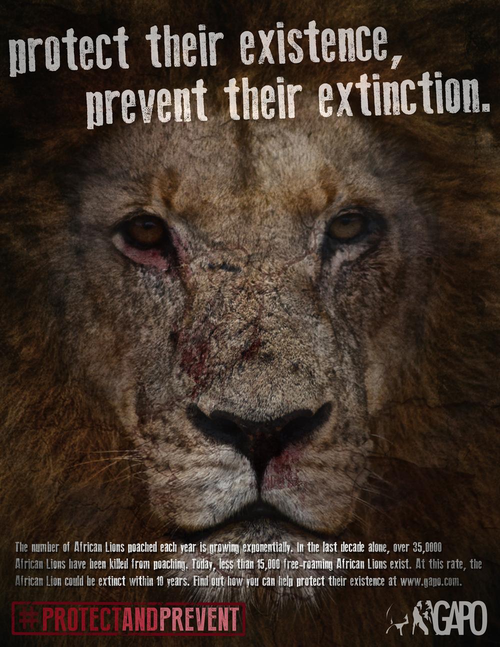 GAPO-Campaign-lion.jpg