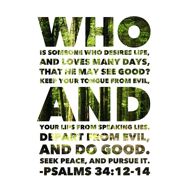 thehopecenter :     Who is someone who desires life, And loves many days, that he may see good? Keep your tongue from evil, And your lips from speaking lies. Depart from evil, and do good. Seek #peace, and pursue it.  ~Psalms 34:12-14   #hopecenter #bible #scripture #love #jesus #christianity #thehopecenter #prayer #faith #bibleverse (at The Hope Center)