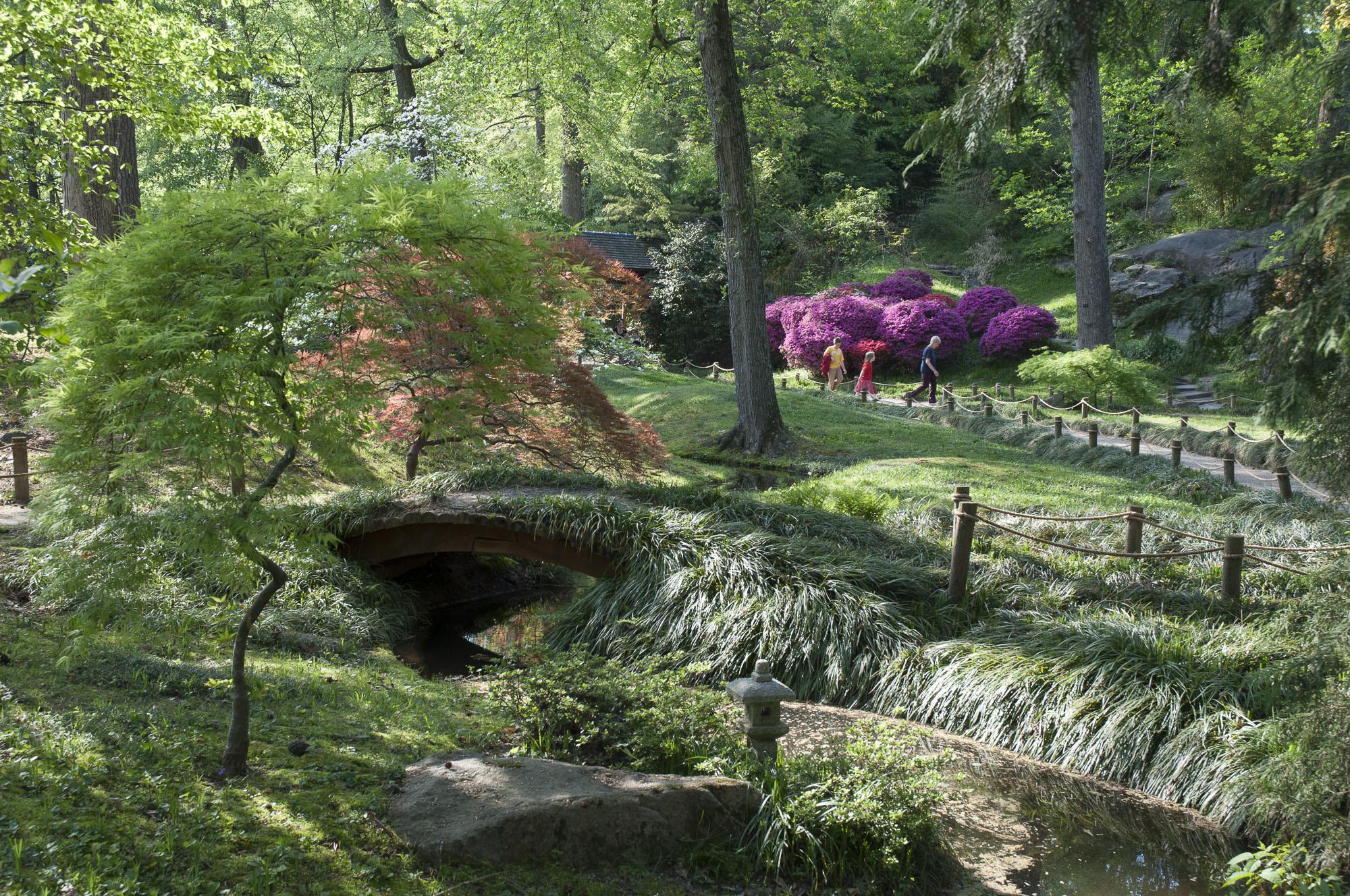 Viginia-gardens-062.jpg