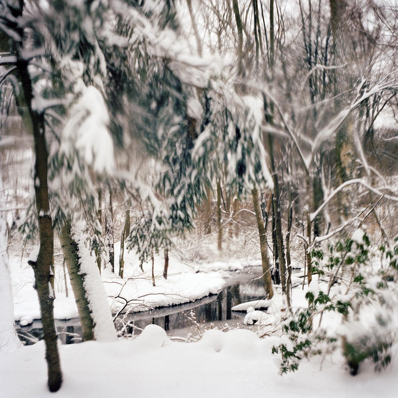 winter03 copy.jpg