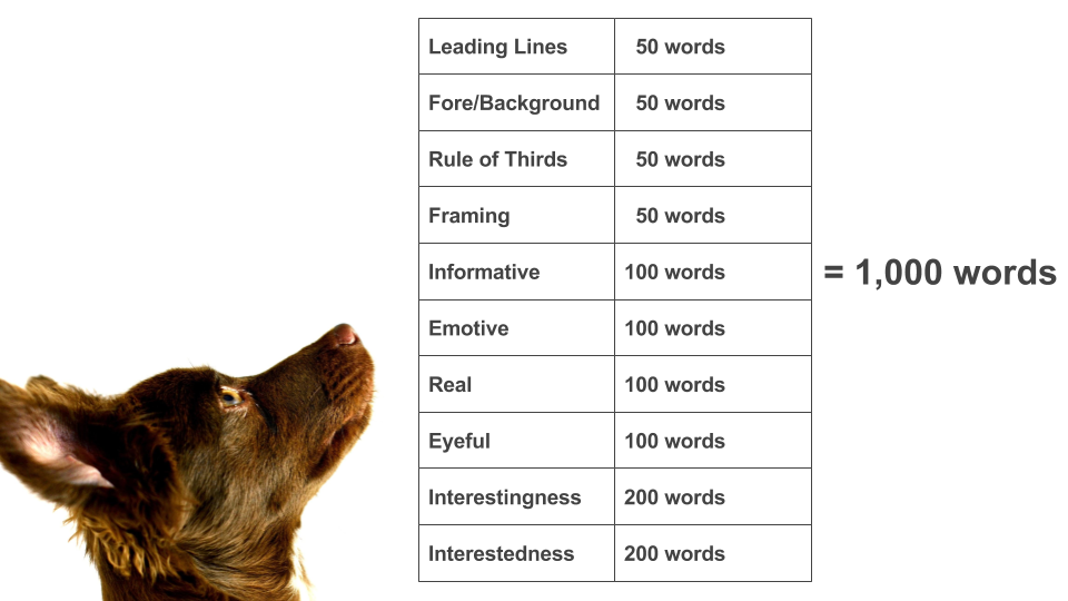 10-criteria-for-1000-words.png